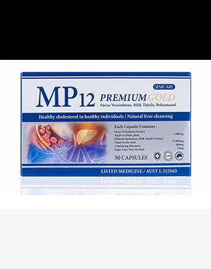 엠피12 MP 12