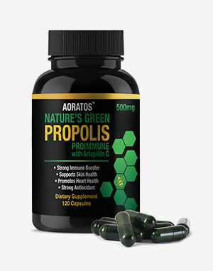 프로폴리스 AORATOS NATURE'S GREEN PROPOLIS 500mg PROIMMUNE with Artepillin C